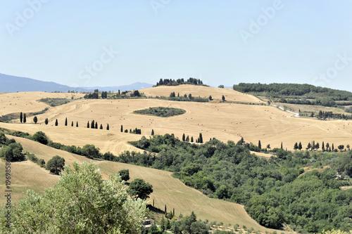 Fotobehang Beige Abgeerntete Felder südlich von Siena, Toscana, Italien, Europa