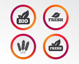 Natural fresh Bio food icons. Gluten free agricultural sign symbol. Infographic design buttons. Circle templates. Vector - 197005289