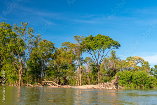 Dziki brzeg Mekongu