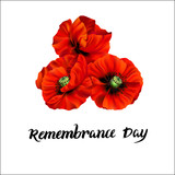Remembrance Day greeting card - 197025689