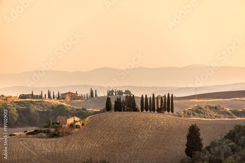Foto op Canvas Beige Summer landscape at sunrise in Tuscany, Italy