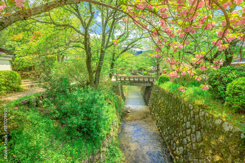 Papiers peints Kyoto Scenic landscape of Philosopher's walk also called Tetsugaku-no-michi, a pedestrian path that follows a cherry-tree-lined canal in Kyoto, Higashiyama district, Japan.