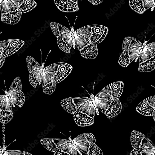 bezszwowe tło latających motyli