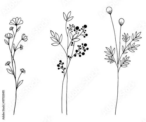 Poster Hand drawn of vector vintage flowers elements isolated on white background.
