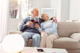 I love you. Lovely elderly couple cuddling on the couch and making a toast to love while exchanging admiring looks - 197057009