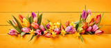 Easter or Spring banner with colorful flowers