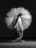 Young beautiful ballerina is posing in studio - 197067250