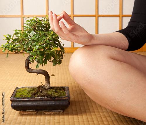 Foto op Canvas Zen Serenity and meditation