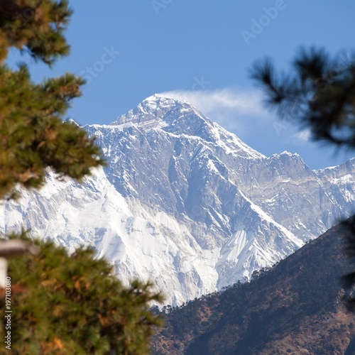 View of Mount Everest in the middle pine trees