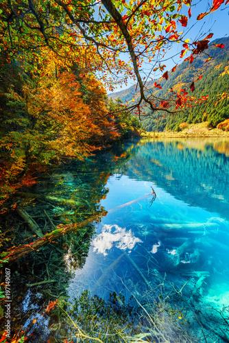 In de dag Blauwe jeans Fantastic autumn landscape. Amazing lake with azure water