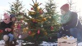 Family decorating the christmas tree in forest  - 197194654