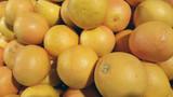 photo of fresh orange
