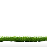 Grass Border Isolated White Background
