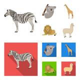 African zebra, animal koala, giraffe, wild predator, lion. Wild animals set collection icons in cartoon,flat style vector symbol stock illustration web. - 197227275