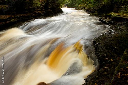 rusing stream in fall  - 197232841