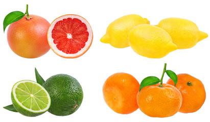 Citrus Fruit Set (tangerine, grapefruit, lime, lemon) isolated on white background.