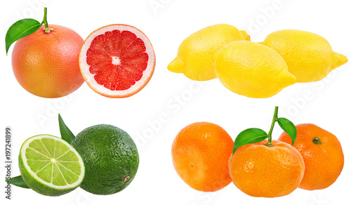 Citrus Fruit Set (tangerine, grapefruit, lime, lemon) isolated on white background. - 197241899