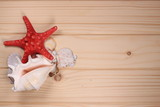 Seashells and starfish on a wooden background - 197242290