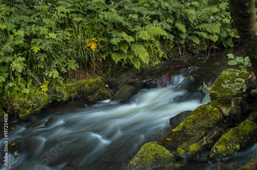 Flowing water turned milky white by a long exposure as it flows around green and brown moss covered rocks. - 197254618
