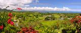 Panorama of the Fijian West Coast. - 197284059