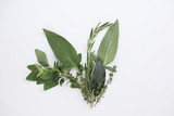 Variety of fresh herbs for cooking with thyme, laurel or bay leaf, oregano, rosemary and sage laid out on a white background with copy space in a food concept
