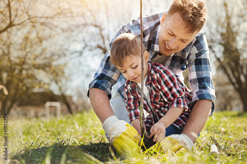 Enjoy beauty of nature. Positive caring man and his little son planting a tree in the garden while spending time together