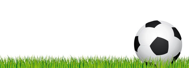 Soccer banner. Football stadium grass and white background. Vector header with soccer ball in the right side.