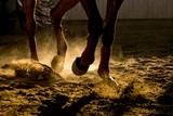 Detail of a horse training inside a horseback riding school in Romania, dust and back light - 197356068