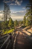Trail at sunset behind the Bryce - Brice - Utah - Usa