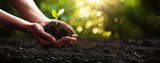 Plant in Hands. Ecology concept. Nature Background - 197386409