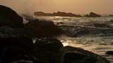 Waves beat on the coastal stones and bird flies away - 197393662
