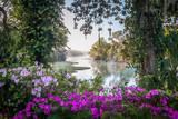 Azaleas and Rainbow River in North Florida