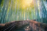 Arashiyama bamboo forest in Kyoto, Japan.