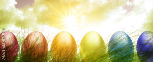 Wielkanocni jajka w łące