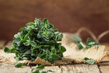 Fresh green oregano or Origanum vulgare in a beam, vintage wood background, selective focus - 197465209