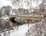 Bow bridge Central Park during snow storm