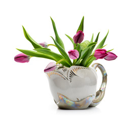Lilac tulips in a ceramic pot on a white background