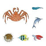 Fototapeta A variety of marine animals cartoon icons in set collection for design. Fish and shellfish vector symbol stock web illustration.