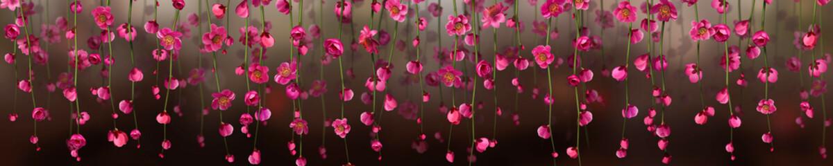 Panoramik Çiçek Manzarası © konyadesign