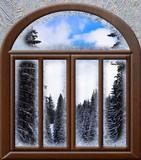 view through a frozen landscape window