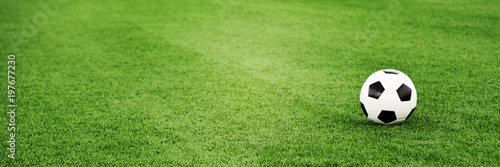 Traditional soccer ball on grass field