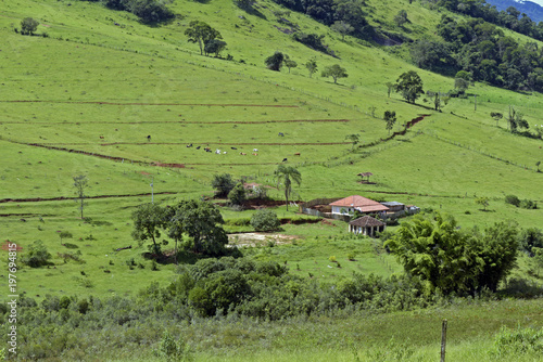 Fotobehang Pistache Rural landscape with small house