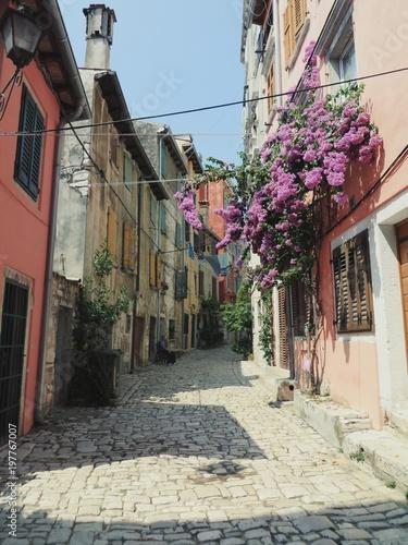 Foto op Plexiglas Smal steegje Backstreets of Rovinj