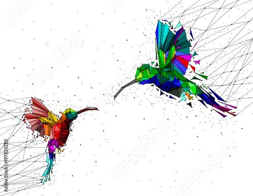 Abstrakt niski poli- pary hummingbird z punkt złączoną siecią, zwierzęcy geometryczny pojęcie, wektor.