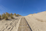 Wooden Board allowing to access the Beach at Domburg / Netherlands