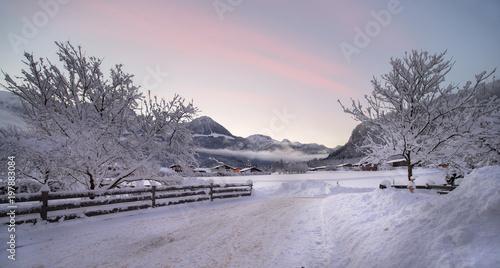 Foto op Plexiglas Lichtroze Winter