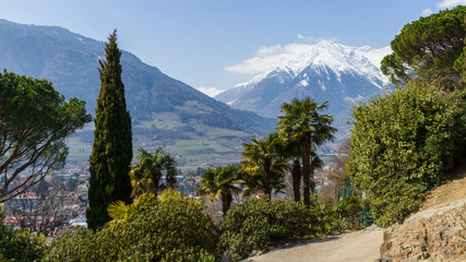 Beautiful Easter-Hike with palm trees and snow-covered mountains in Merano, Italy