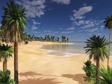 tropical beach with palm trees 3D rendering