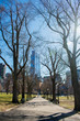 A view of the Boston Common