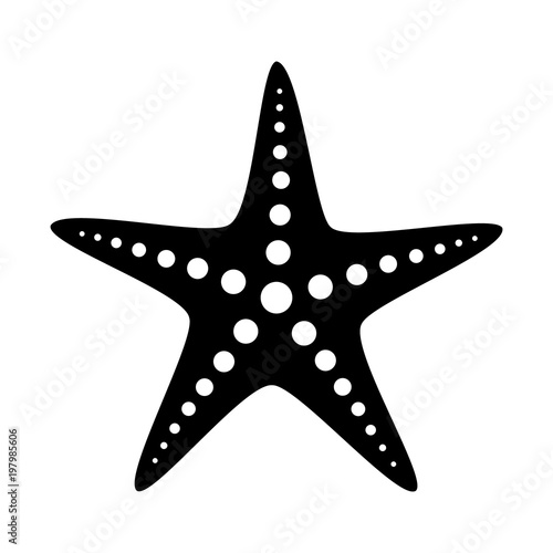Common starfish or sea star fish marine life flat vector icon for apps and websites